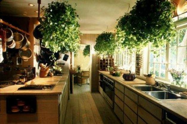 Top 10 Gorgeous Tips for Designing Your Indoor Garden